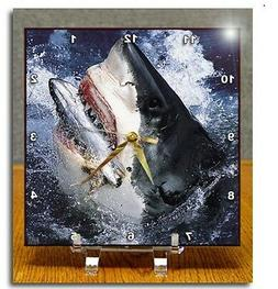 3dRose dc_10588_1 Desk Clock, Great White Shark, 6 by 6-Inch